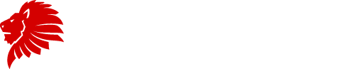 letzvolley logo white header